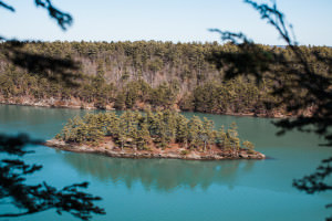 View of a coastal island and blue water in Harpswell Maine on The Cliff Trail.