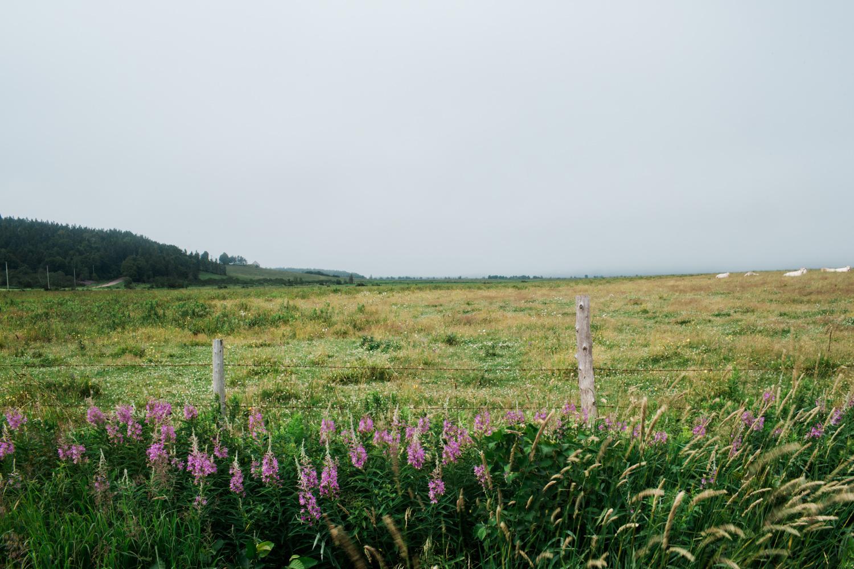 hiking-cape-breton-nova-soctia-travel-1152