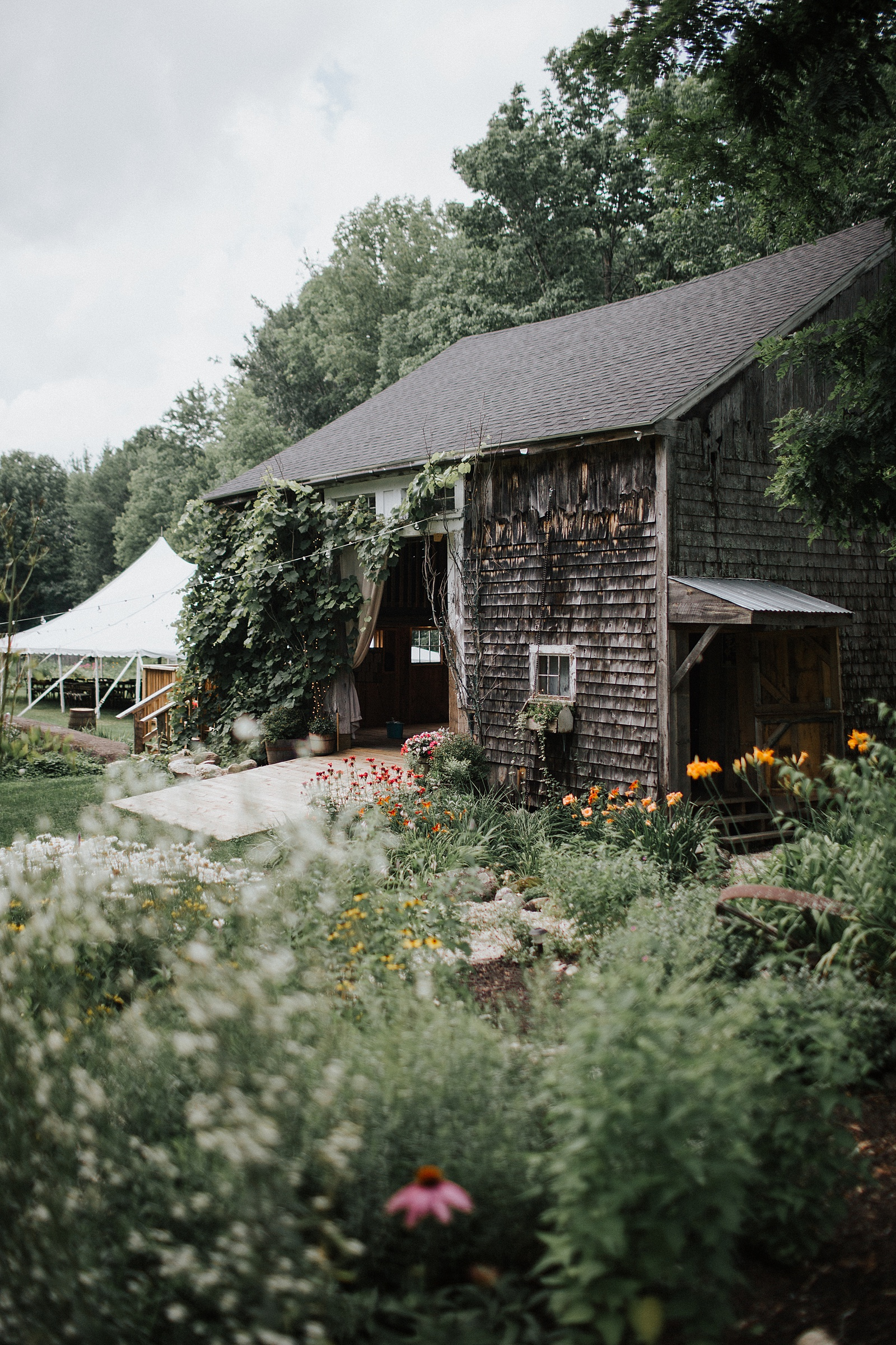 barn,bridal,caswell farm,documentary,donut,fine art,garden,maine,portland,summer,toasts,wedding,